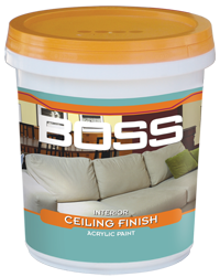 BOSS INTERIOR CEILING FINISH