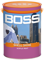 BOSS EXTERIOR SHELL SHINE
